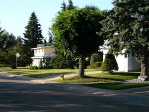 Street Scene, Laurier Heights, Edmonton