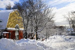 Snow in Suburban Toronto